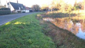 Village pond at Over